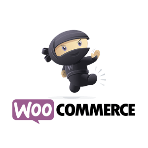 WooCommerce One-on-One Coaching and Online Course